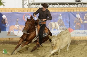 Working Cowhorse: Jan Laves u. CL Silent Badger