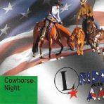 VIP-Eintrittskarten Bronze: Cutting/Cowhorse Night